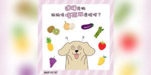 41_互動小測驗_狗狗食物-01