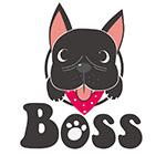 Boss Pet