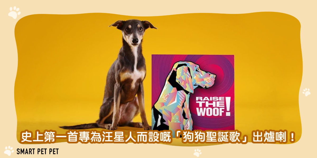 104 狗狗聖誕歌-01