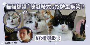 109 貓貓陳冠希笑-01