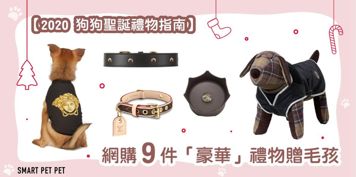 xmas_dog_gifts_small