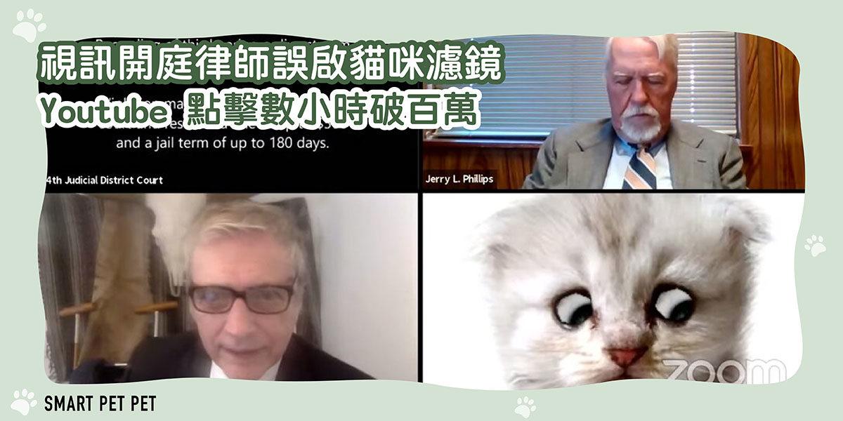 132 視訊開庭律師誤啟貓咪濾鏡