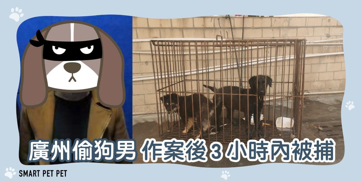 147 廣州偷狗男-01