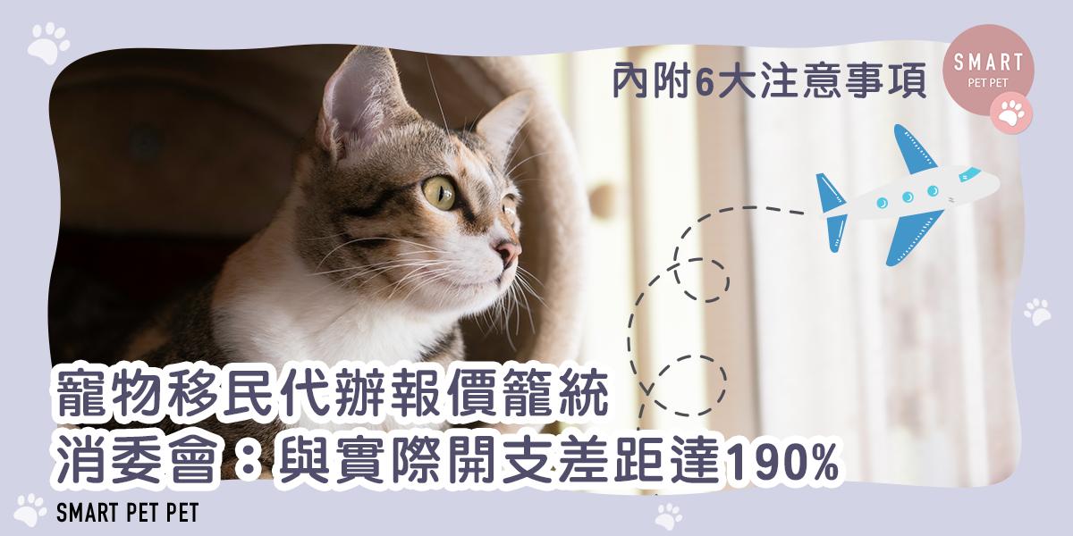 寵物移民_報價_feature